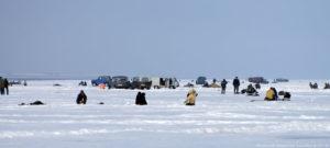 Описание Северной рыбы в Новосибирске